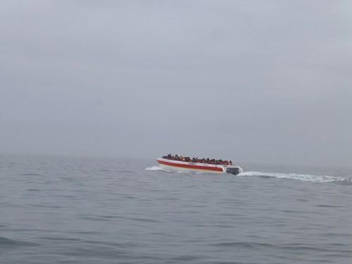 バジェスタ諸島の観光ボート