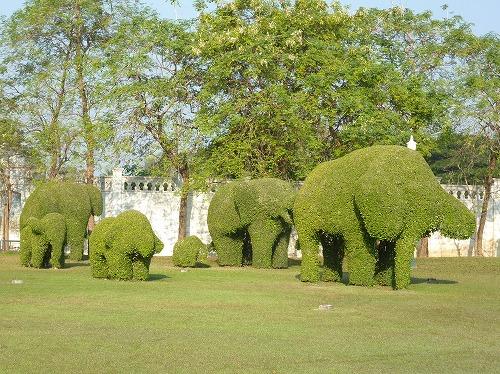 タイ・アユタヤ遺跡近くのバン・パイン宮殿の象の形に刈り込まれた植栽