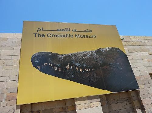 エジプトのコム・オンボ神殿に併設するワニ博物館