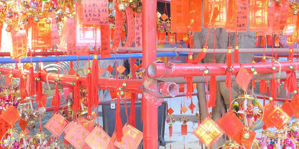 マカオの媽閣廟にある百年夫婦樹
