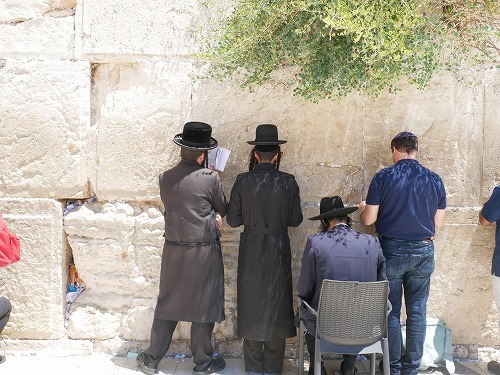 エルサレム(イスラエル)の嘆きの壁の前で聖書を読む正統派ユダヤ教徒たち