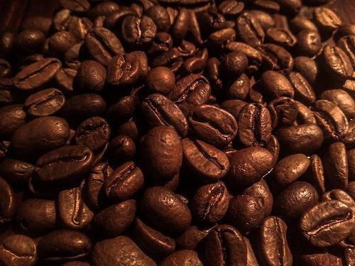 コーヒー豆(焙煎後)