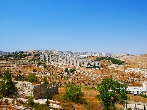 パレスチナの羊飼いの野から見える風景
