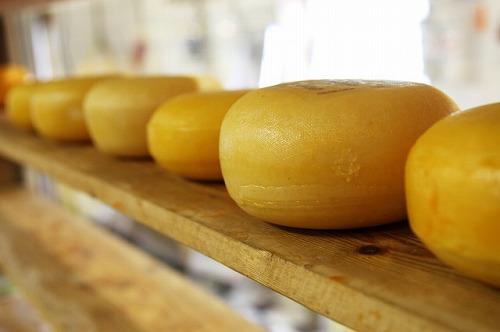 保管されているチーズ